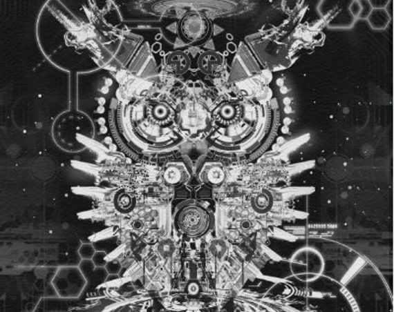 "ROBO OWL Gallery Quality Canvas Print 16x20"""