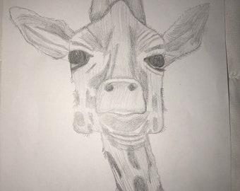 Hand drawn pencil sketch of giraffe. 8x11 plain white paper.