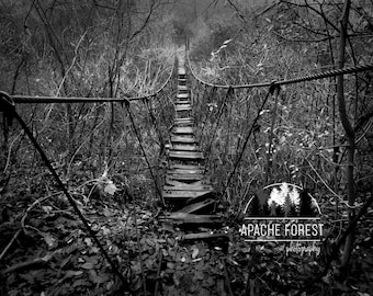 Bridge To Unknown by ApacheForest / Nature Photography / Bridge / Balck & Whte / Low Vibrance / Forest / Dark / Fine Art Photography