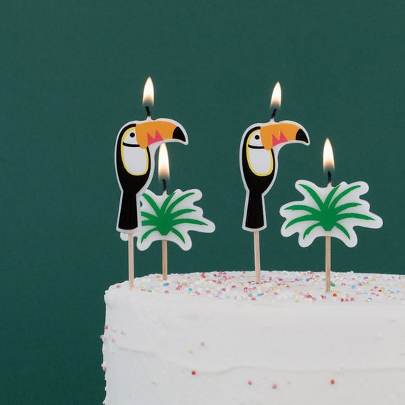 Hawaiian Birthday Cake Candles Toucan Party Decor Tropical