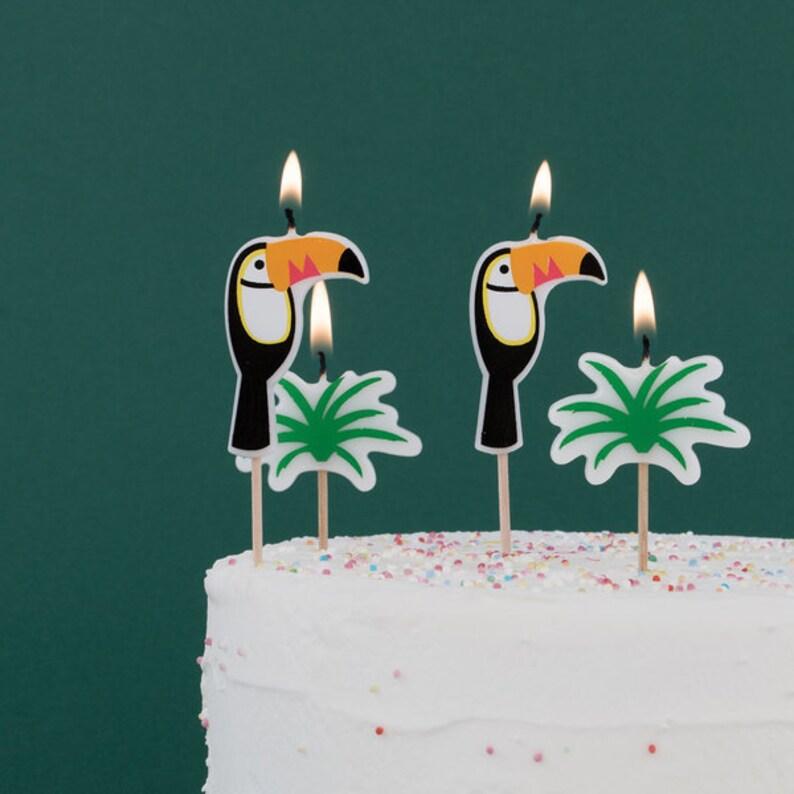 Hawaiian Birthday Cake Candles Toucan Party Decor Tropical