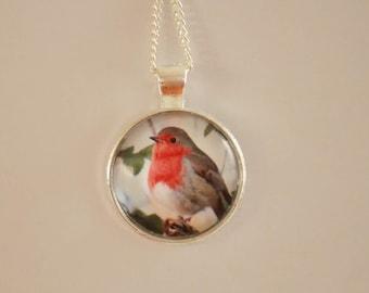 Robin pendant necklace