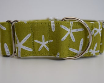 Martingale Dog Collar Green Starfish - Size S-XL- Adjustable - 1.5 inch width