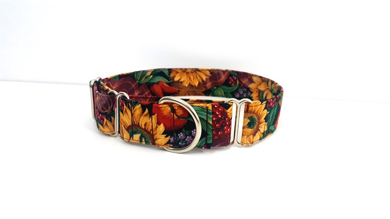 Martingale Dog Collar Ultimate Harvest Fall Autumn Size M-XL Adjustable 1.5 inch or 2 inch width