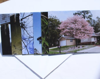 Greeting/Note Cards