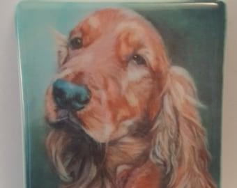 Artistic prints of dog and cat portraits on ceramic fridge magnets | German Shepherd | Maine Coon | Cocker Spaniel