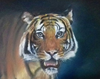 Original artwork of a Tiger | Pastel Art