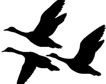 Ducks / Geese decal