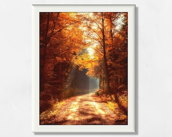 Fall wall art Fine art photography Small Fall wall art Gifts under 20 Nature Landscapes 4x4 inches Autumn trees photo Autumn trails