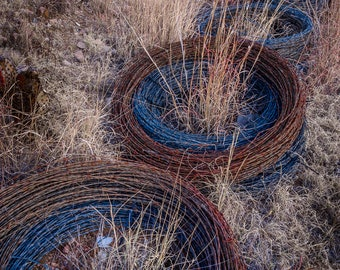 Barbed Wire in Field, No. 1