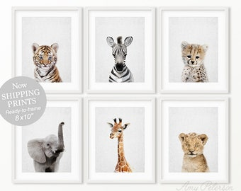 SHIPPED Safari Tx Ready To Frame 8x10 Prints Set Of 6 Animal Wall Art Nursery Decor By Amy Peterson