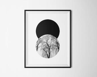 Circular Tree - A3 Digital Print
