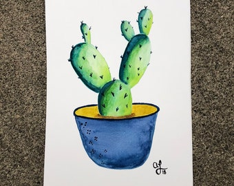 Green Potted Cactus