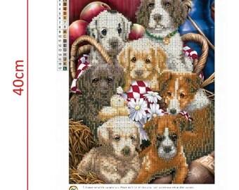 Diamond painting kit cute dogs