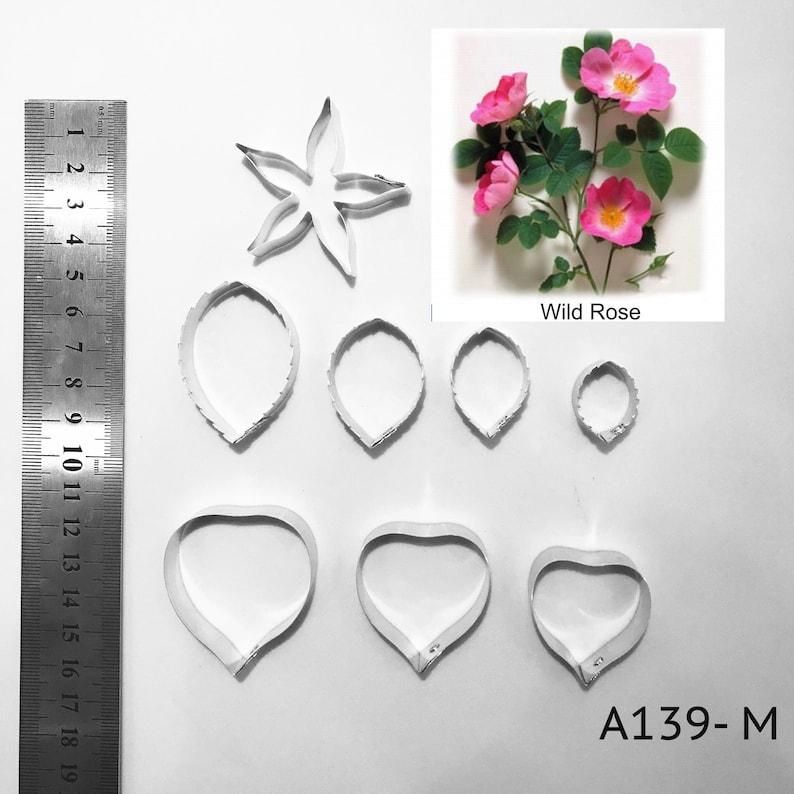 Petale De Rose Sauvage Et Fleur Dargile Feuille Complet Set Etsy