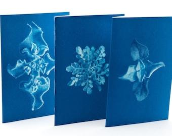 Botanical Greeting Cards - set n.3