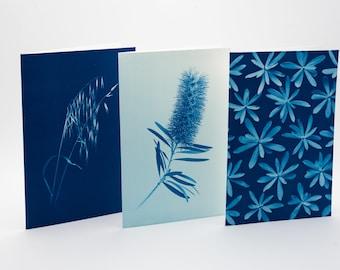Botanical Greeting Cards - set n.4