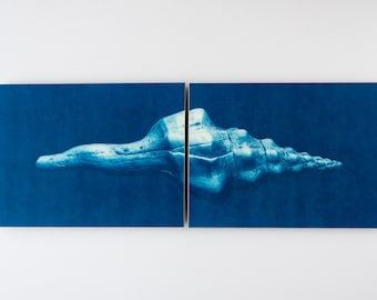 "Large diptich ""Long shell"" cyanotype print"