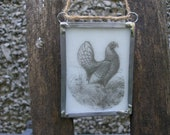 Hen fused on to white glass, handmade and fused by me