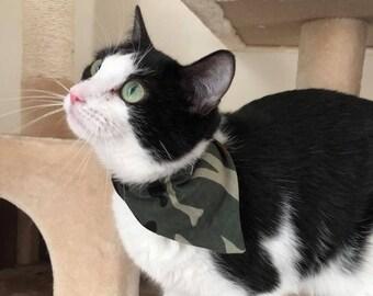 Sur le collier chat Bandana