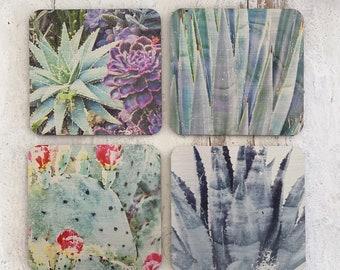 Southwest Cactus Photography Coasters - The Modern Angle - Set of Coasters