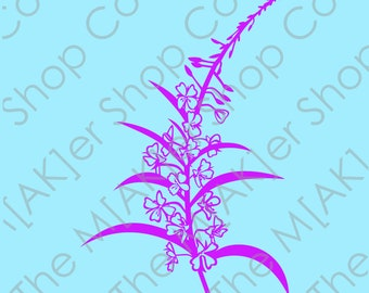 Alaska Wildflower fireweed digital download