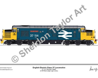 66cc2946d5d3 Class 25 222 Locomotive in BR Blue Livery Locomotive