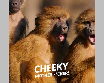 Cheeky Mother F*cker! funny greeting card