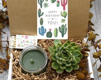 Birthday Gift For Best Friend Mom Her Live Succulent Box