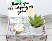 Thank you for helping us grow - Corporate Gifts - Coworker Gift - Thank You Gift Ideas - Live Succulent Gift Box - Employee gift (XFK9)