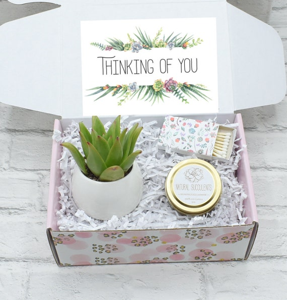 Send a Gift - Missing You Really Succ Thinking of You Gift XBQ1 Missing you Friendship Gift Thinking of you Succulent Gift