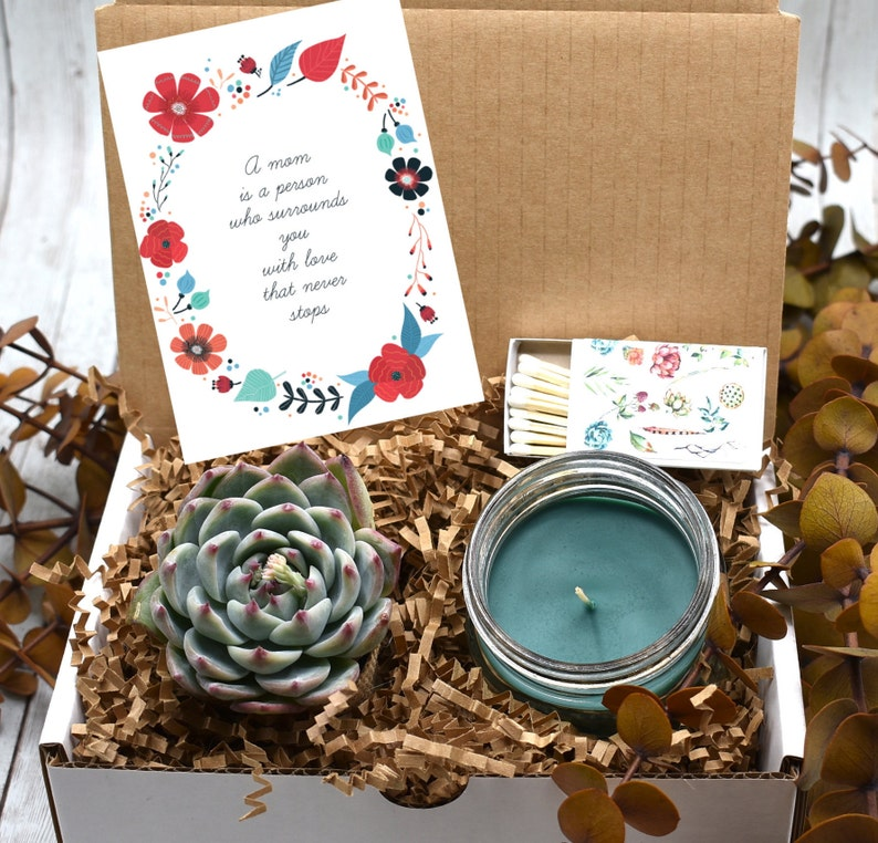 Live Succulent Birthday Gift Box For Mom
