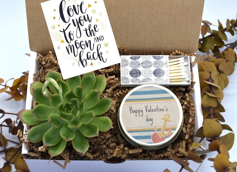 I Love You Gift Gift for her Succulent Gift Box Valentine/'s Day Gift Box Girlfriend gift-Care Package Happy Valentine/'s Day Gift