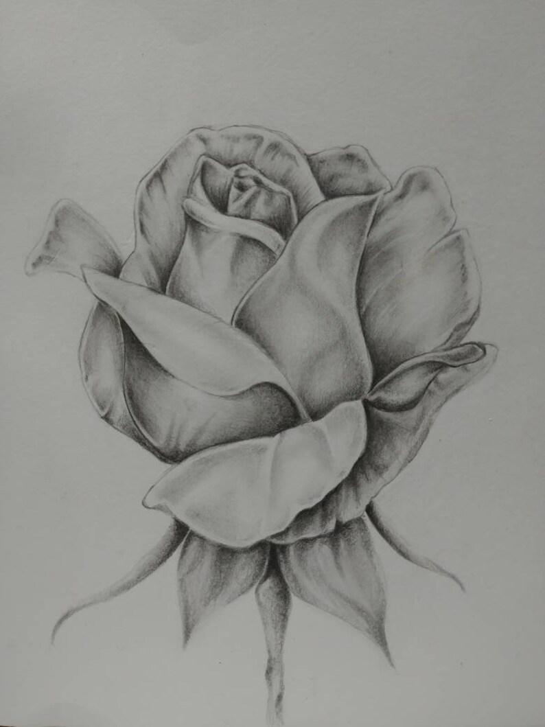 Rose Print image 0