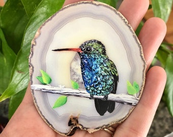 Colorful Hummingbird Magnets Set of Six 1.5 Inch Magnets Pretty Bird Kitchen Decor