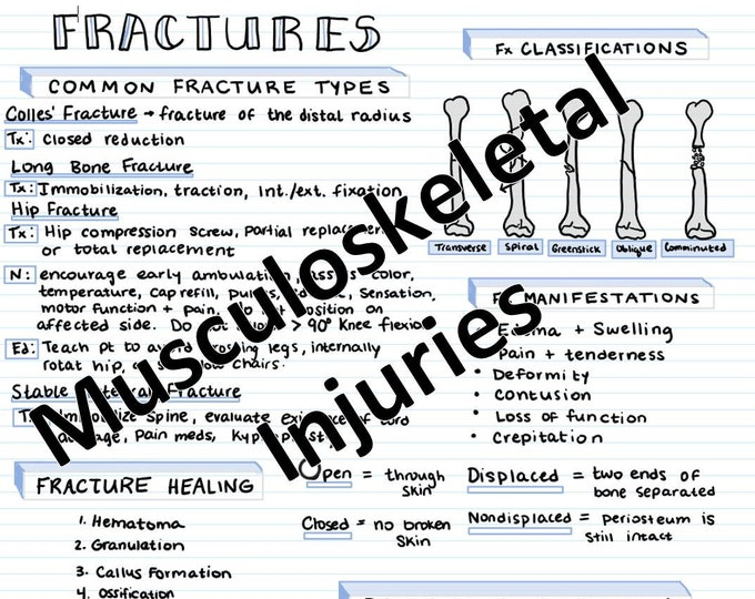 Fractures & Musculoskeletal Injuries