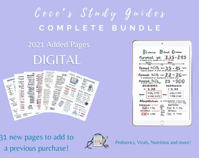CLEARANCE - DIGITAL - 2021 Added Pages Only - Add on to previous complete bundle purchase!