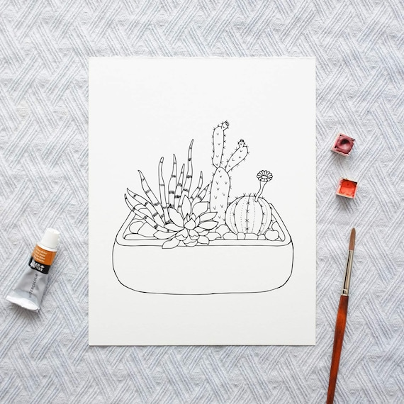 Succulent Coloring Pages Cactus Coloring Pages Cacti Etsy