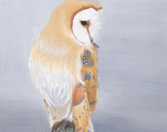 Barn Owl Digital Print