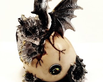 Silver Gray Baby Dragon Hatching From an Egg Collectible Figurine