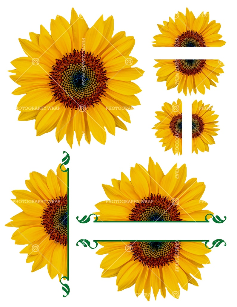 Sunflowers Sunflower Half Sunflower Waterslide Decal | Etsy (794 x 1027 Pixel)