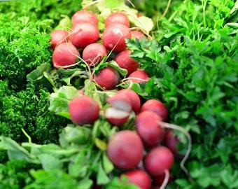 Vegetables Radishes