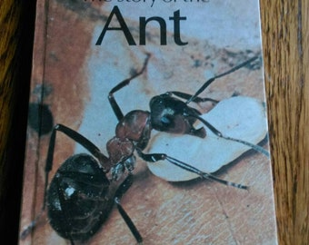 Ladybird Book - Story of the Ant, Series 651