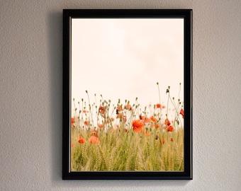 Printable Wall Art. Poppies, flowers, meadow. Creamy
