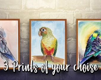 Pack of 3 prints of your choise