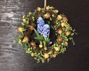 Hyacinths and Bulbs