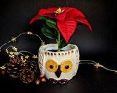 Owl shaped plant pot, small.