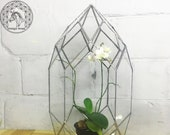 Orchidarium Glass orchidarium Planter Glass Pot Stained Glass Geometric Geometric Terrarium Geometric planter