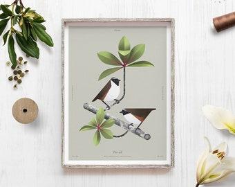 Rare bird print, Poouli, Honeycreeper, Finches, Hawaii art, Endangered species, Geometric minimal, Bird lover gift, Biology art, Ornithology