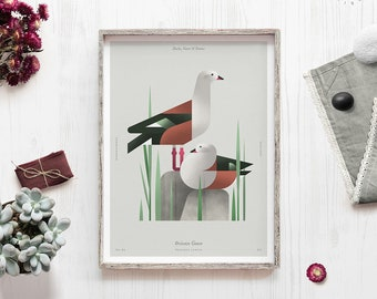 Bird illustartion, Orinoco, Goose, Geese print, Nature poster, Waterfowl, Zoology art, Geometric bird, Bird watcher gift, Shelf art